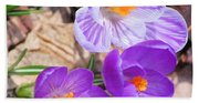 1st Flower In Garden 2010 Photo Beach Towel