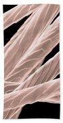 Angora Rabbit Hairs, Sem Beach Towel