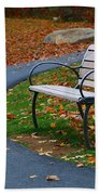 Bench On The Walk Beach Towel by Rick Morgan