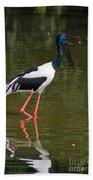 Black-necked Stork Beach Towel