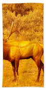 Bull Elk Calling Out Beach Towel