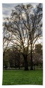 Central Park Views  Beach Towel