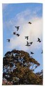 Cockatoos - Canberra - Australia Beach Towel