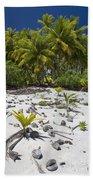 Coconut Palms On A Polynesian Beach Beach Towel