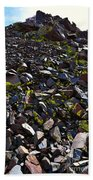 Colorful Lichens Growing On Rocks Along Monument Ridge, In The Eastern Sierra Nevadas Beach Towel