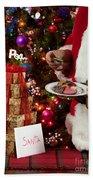 Cookies And Milk For Santa Beach Towel