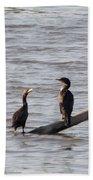 Cormorant Beach Towel