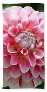 Dahlia Named Hawaii Beach Towel