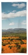 Daisies Blooming In Namaqualand 2 Beach Towel