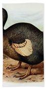 Dodo Bird Raphus Cucullatus, Extinct Beach Towel