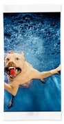 Dog Underwater Series Beach Towel