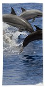 Dolphins Leaping Beach Towel