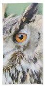 Eurasian Eagle Owl Beach Sheet