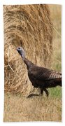 Female Eastern Wild Turkey Beach Towel