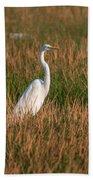 Great Egret At Coba Village Beach Towel
