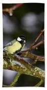 Great Tit Beach Towel