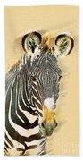 Grevys Zebra, Samburu, Kenya Beach Towel