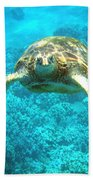 Here's Looking At You Beach Towel