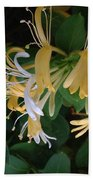 Honeysuckle Vine Beach Towel