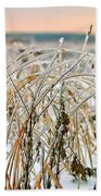 Ice On Branches Beach Towel