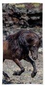 Icelandic Black Stallion, Iceland Beach Towel