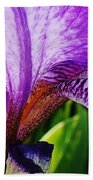 Iris Macro Beach Towel