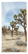 Joshua Tree National Park, California Beach Towel