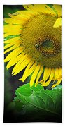 Just A Smile  Beach Towel