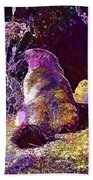 Mountain Marmot Wildlife Animals  Beach Towel