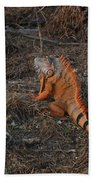 Orange Iguana Beach Towel
