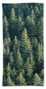 Oregon, Cascade Mountain Beach Towel