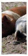 Pigs Beach Towel