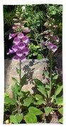 2 Pink Bell Flowers. Foxglove Beach Towel