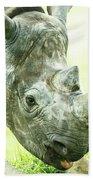 Rhino Beach Sheet