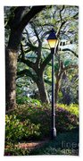 Savannah Spring Perspective Beach Towel