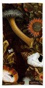 Sea Anemones, 1860 Beach Towel