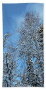 Snowy Trees Against A Blue Sky Beach Towel