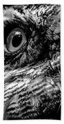Spectacled Owl  Beach Towel