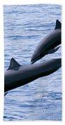 Spinner Dolphins Beach Towel