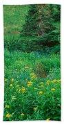 Stream And Alpine Flowers, Ouray Beach Towel