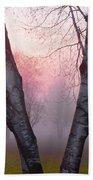 Sunrise Trees Fog Beach Towel