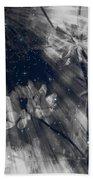 Symbiosis Beach Towel