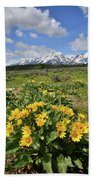 Teton Balsam Root Beach Sheet
