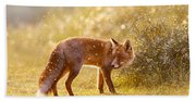 The Fox And The Fairy Dust Beach Towel