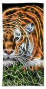 Tiger Collection Beach Towel