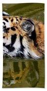 Tiger Beach Sheet