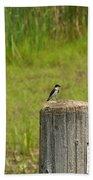 Tree Swallow Beach Towel