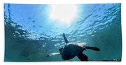 Turtles View Beach Towel