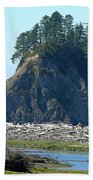 Washington Coast  Beach Towel