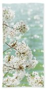 White Cherry Blossoms Trees Beach Towel